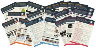 SNAP Card Essentials – 20 Lessons